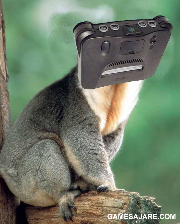 koala64