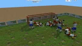 GOOFBALL GOALS