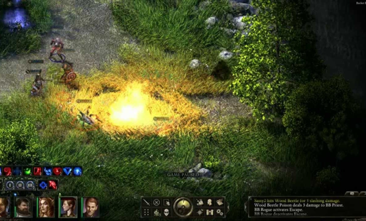 VEINTE MINUTITOS DE PILLARS OF ETERNITY